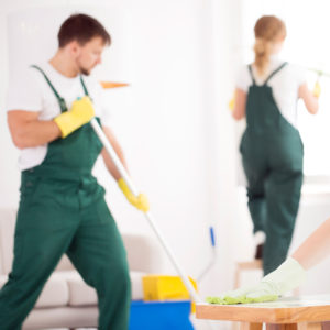 Profesionalno čišćenje